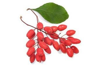 Барбарис сибирский (плоды) 30гр.