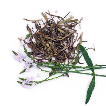 Вербена (трава) 50 гр.